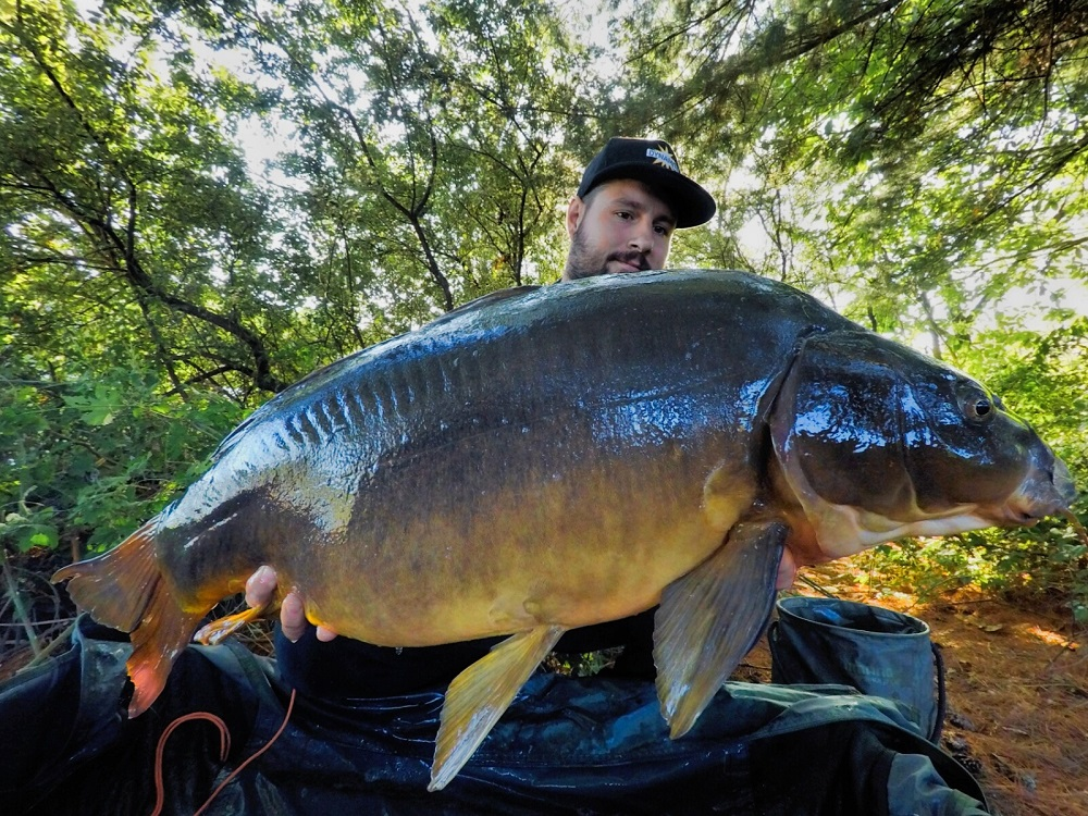 thomas santandrea italian carp butyric-c pop-up