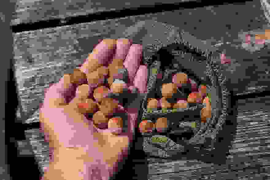 Boost your <b>Boilies</b> for river carp success – Terry Hearn - Dynamite ...