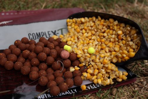 maize and boilies - the prefect combo for carp
