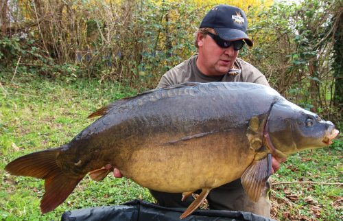 52lb mirror carp tempted the best boilie of complex-t