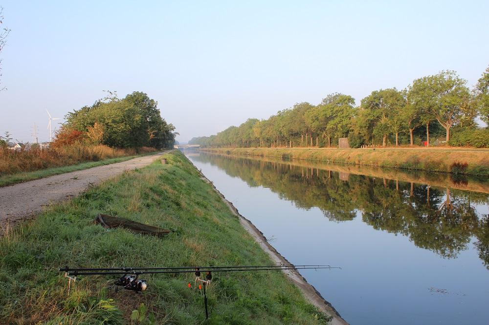 belgium canal carp fishing