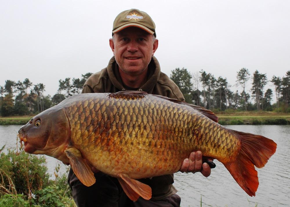 28lb 12oz belgium canal carp