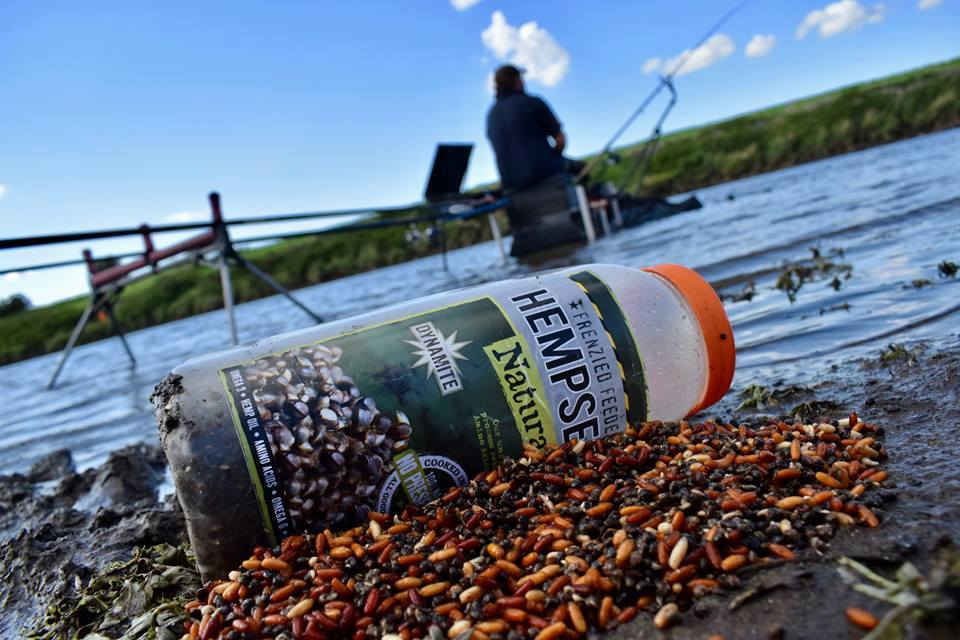 Frenzied Hemp a key river bait for all species