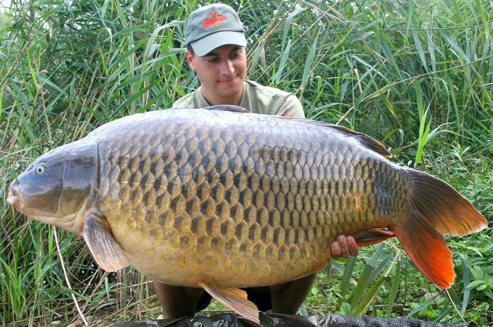 This beauty was caught after Kristof spent time working out how to locate the carp