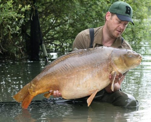 complex-t a good boilie for france carping