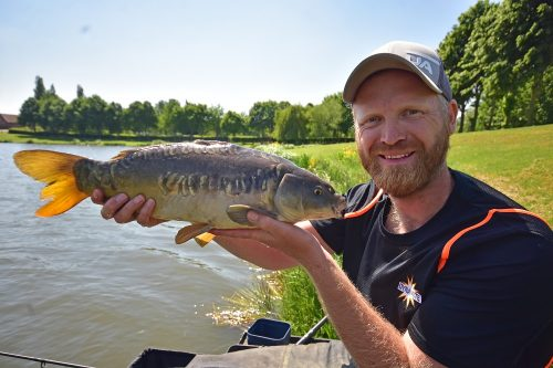 ROB WOOTTON PELLET WAGGLER TIPS