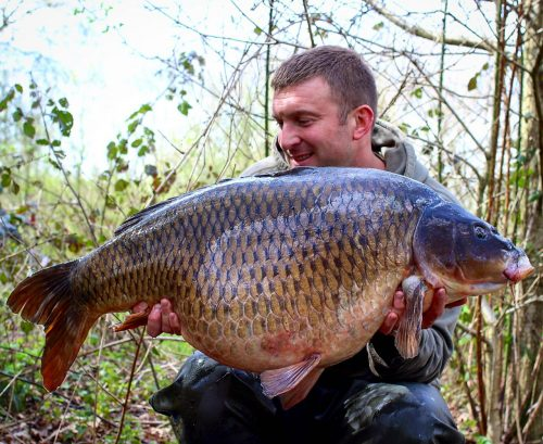 profiling boilies for flavouring carp fishing baits