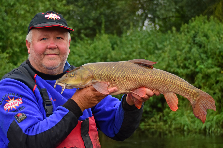 Mark perkins loves using hemp and snails for barbel