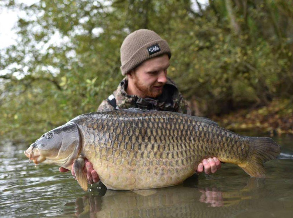 20MM TIGERNUT FISHING BOILIES  BAIT 5 KG FREEPOST