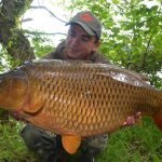 Robin Red Boilies
