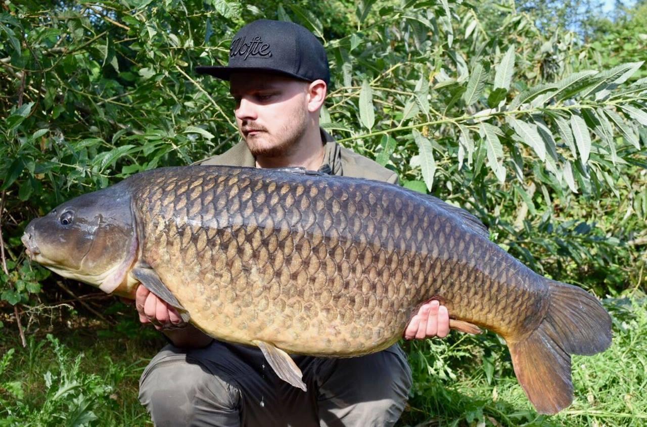 Dynamite Baits Carp And Match Fishing Barbel 10 Kg