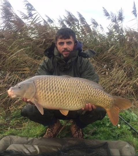 compleX-T caught common carp