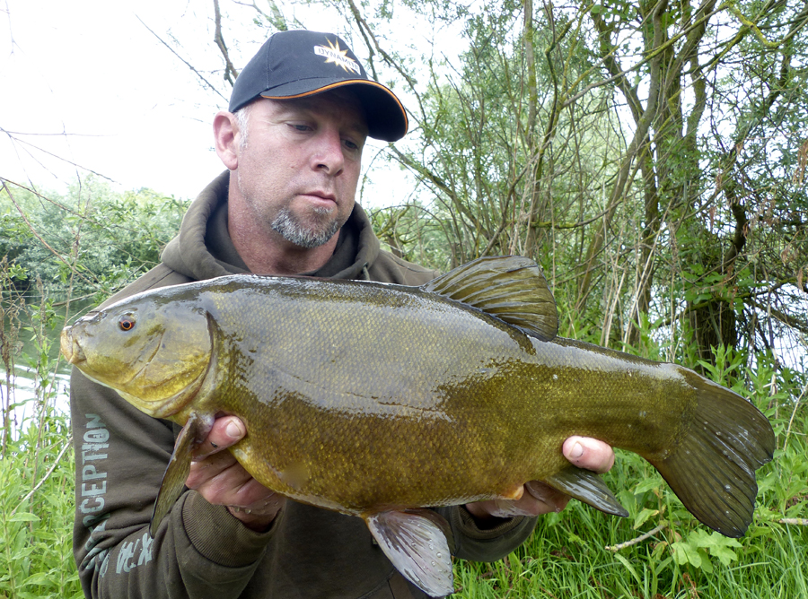 Pick of the days tench