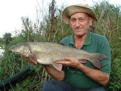 barbel fishing the river trent