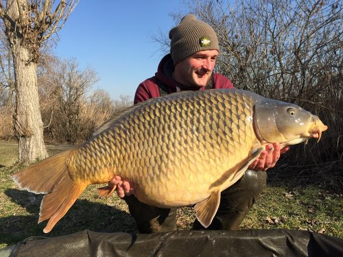 Carp Photos | Carp Fishing in France at Deux Iles with Angling Lines