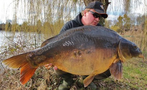 46lb mirror carp in germany for emir caro