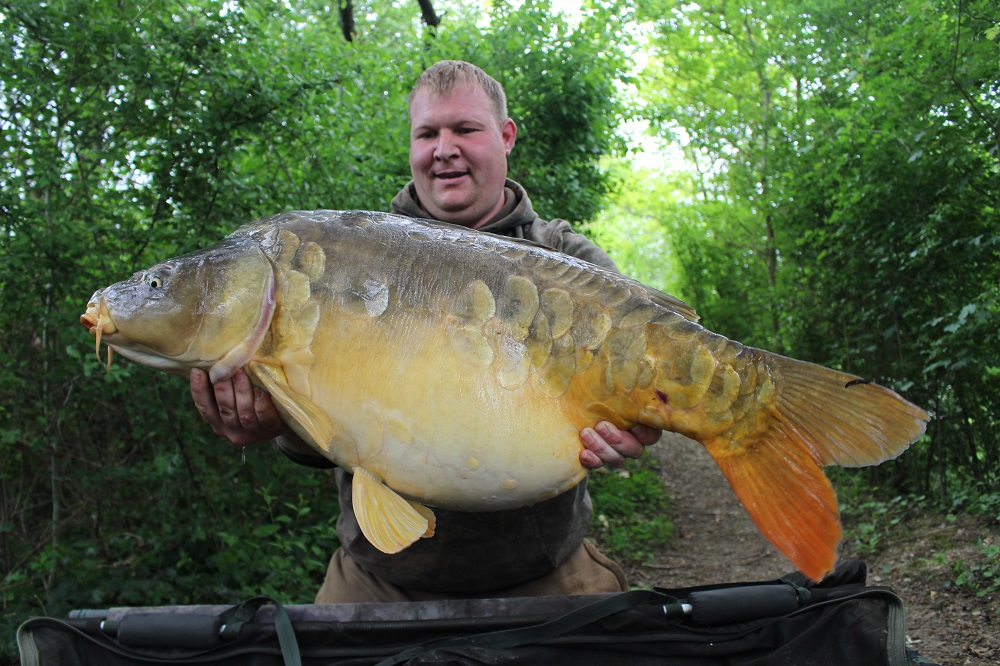 complex-t caught french carp