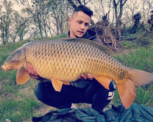 river rhone carp fishing the source pop-up