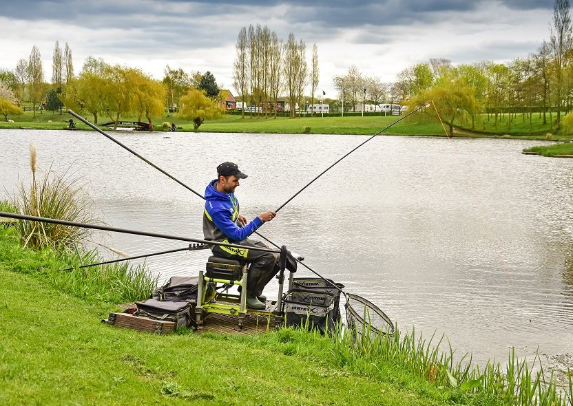 hayfield lakes fish o final
