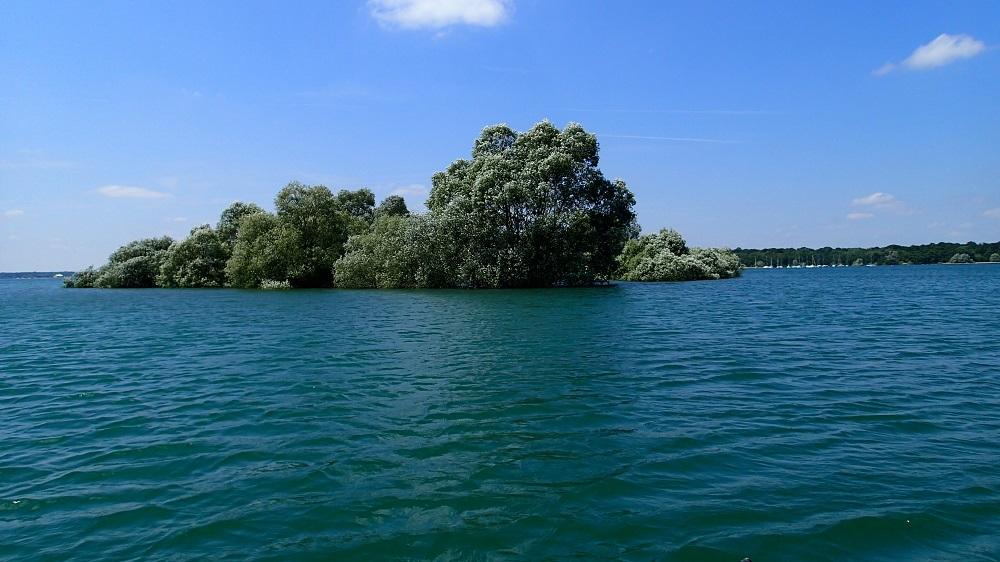 island on a big lake is a carp magnet