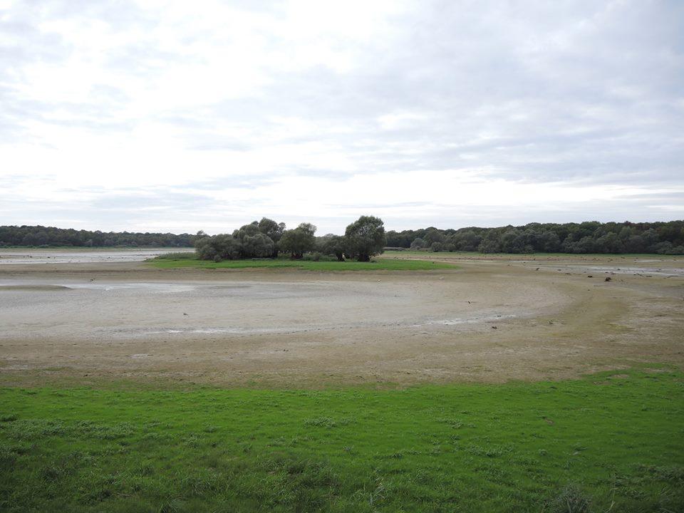 dried up big carp lake
