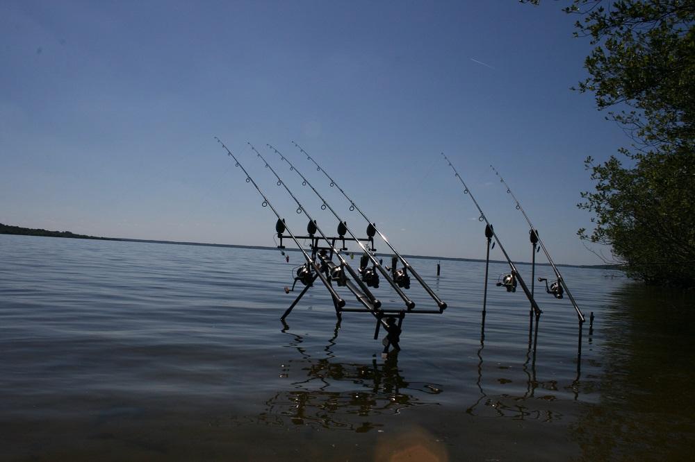 big water carp fishing tactics