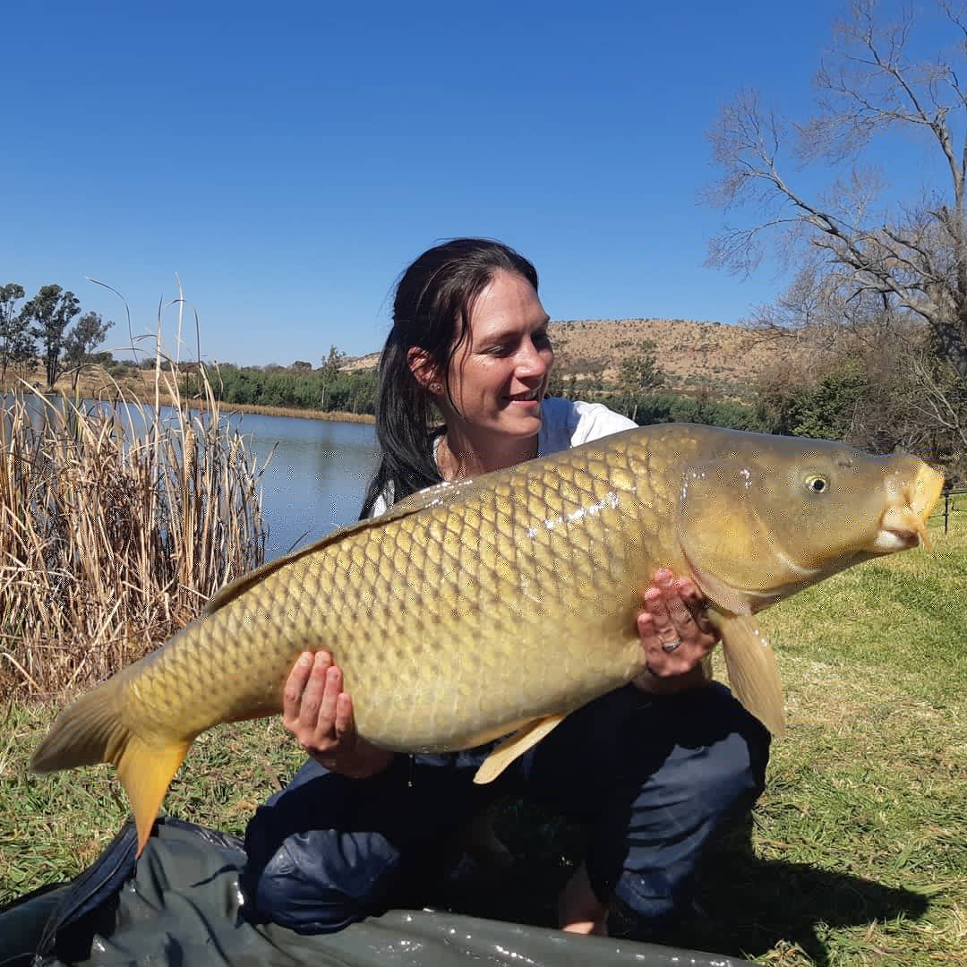 south africa carp fishing