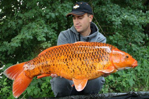 kristof cuderman carp fishing in germany