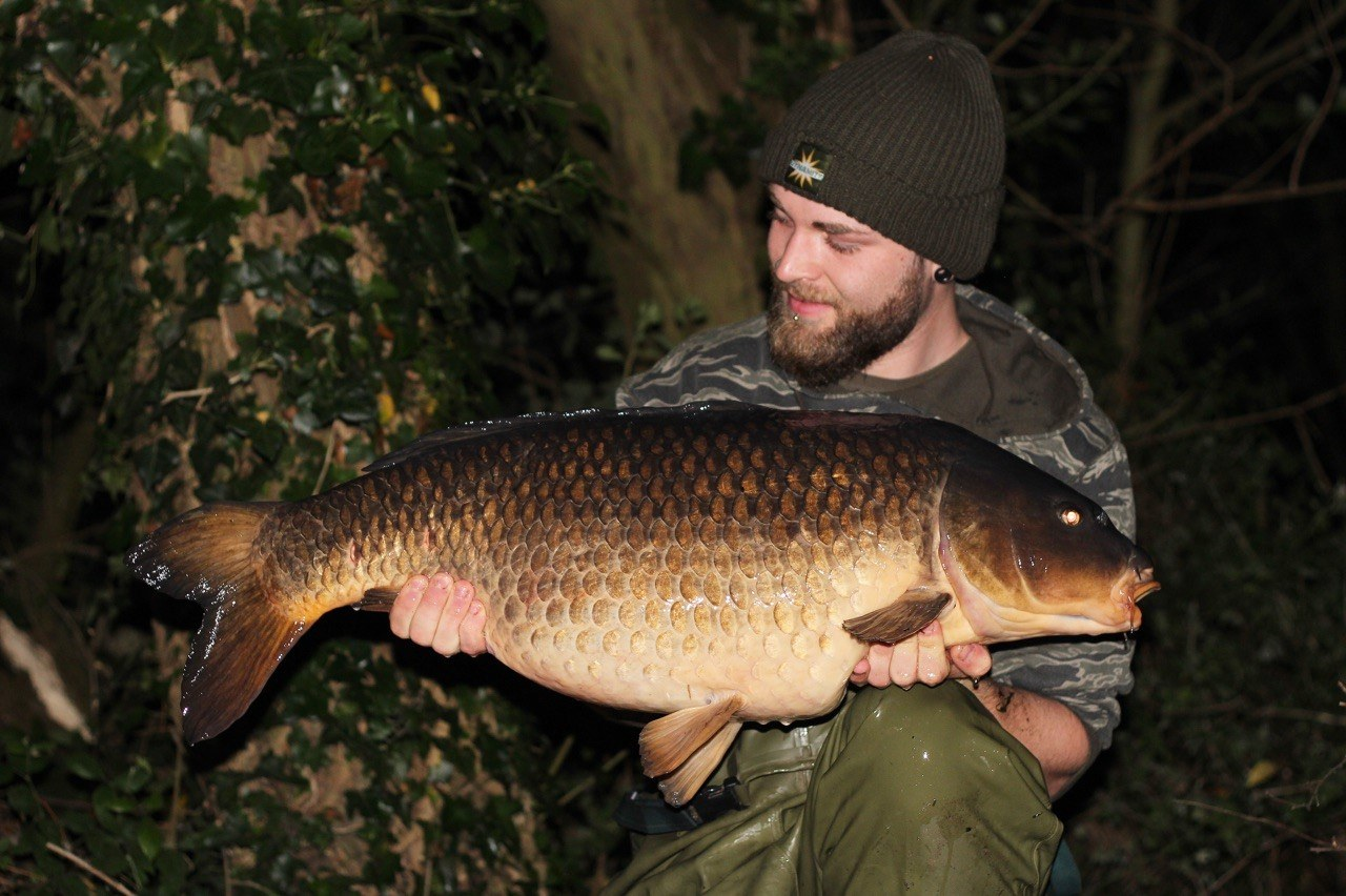 REDMIRE STRAIN OF CARP FROM YATELEY