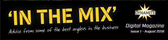 in the mix ezine banner
