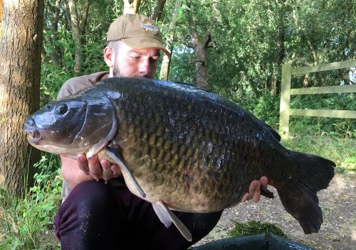 jake lund swan lake common carp on complex-t