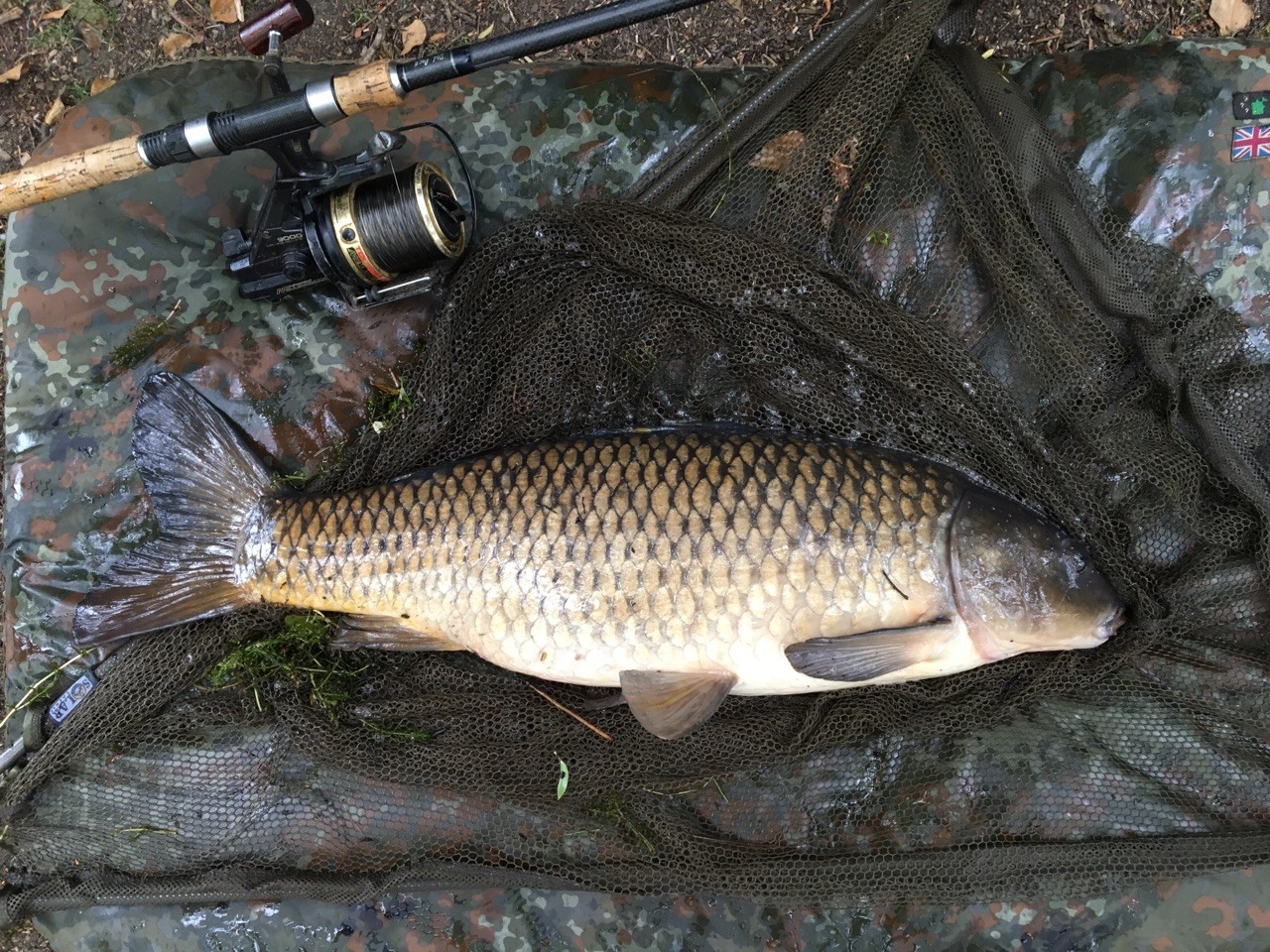 yateley carp fishing