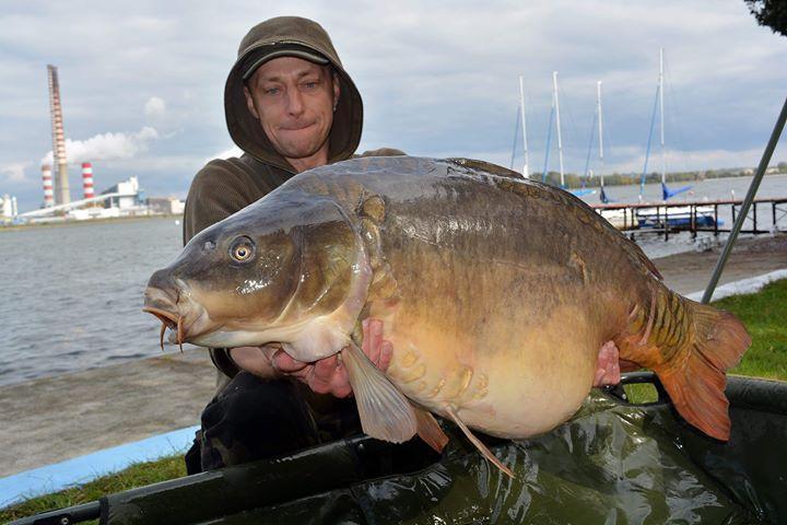poland carp rybik lake complex-t boilies