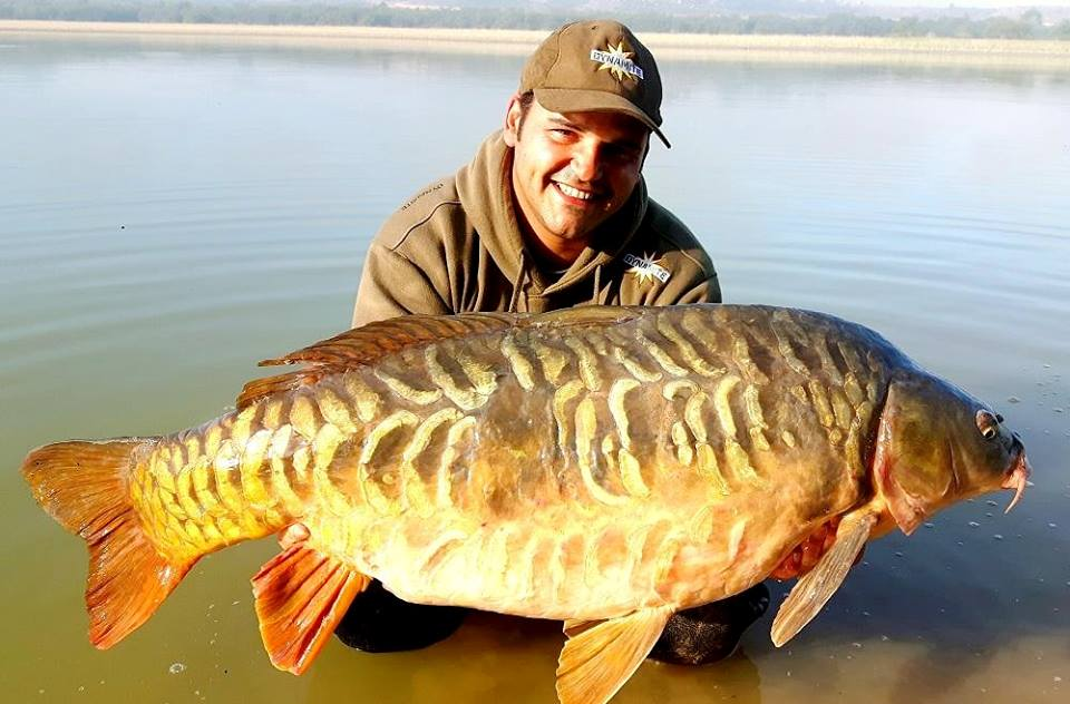 carp fishing on the river ebro