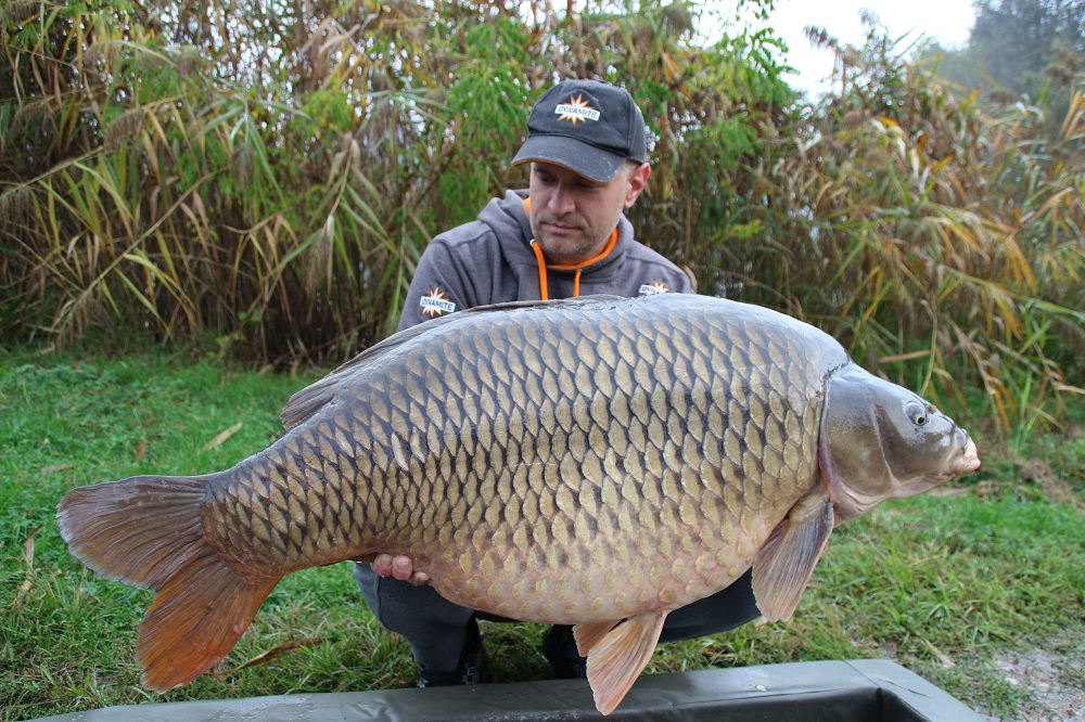 srecko red amo caught carp croatia carping trip