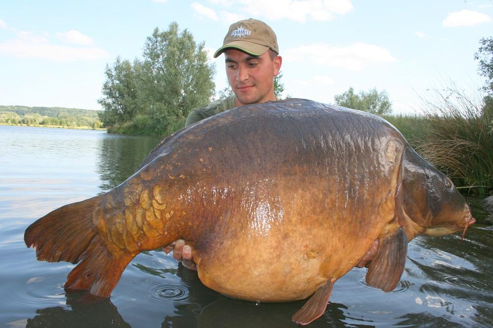 2015 France 38.6kg 85.1lb Monster Tiger Nut 20mm and 15mm pop-up