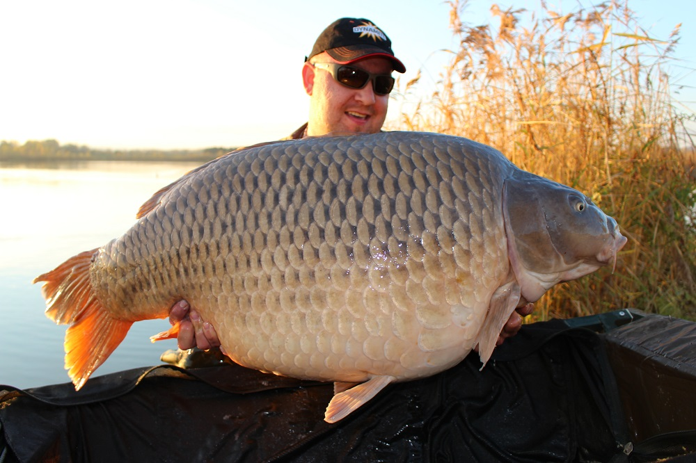 34,1 Kg Common nina the source baits