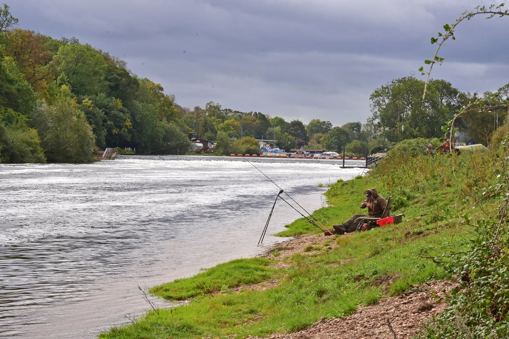 river trent barbel fishing, get it right and you can catch some beauties