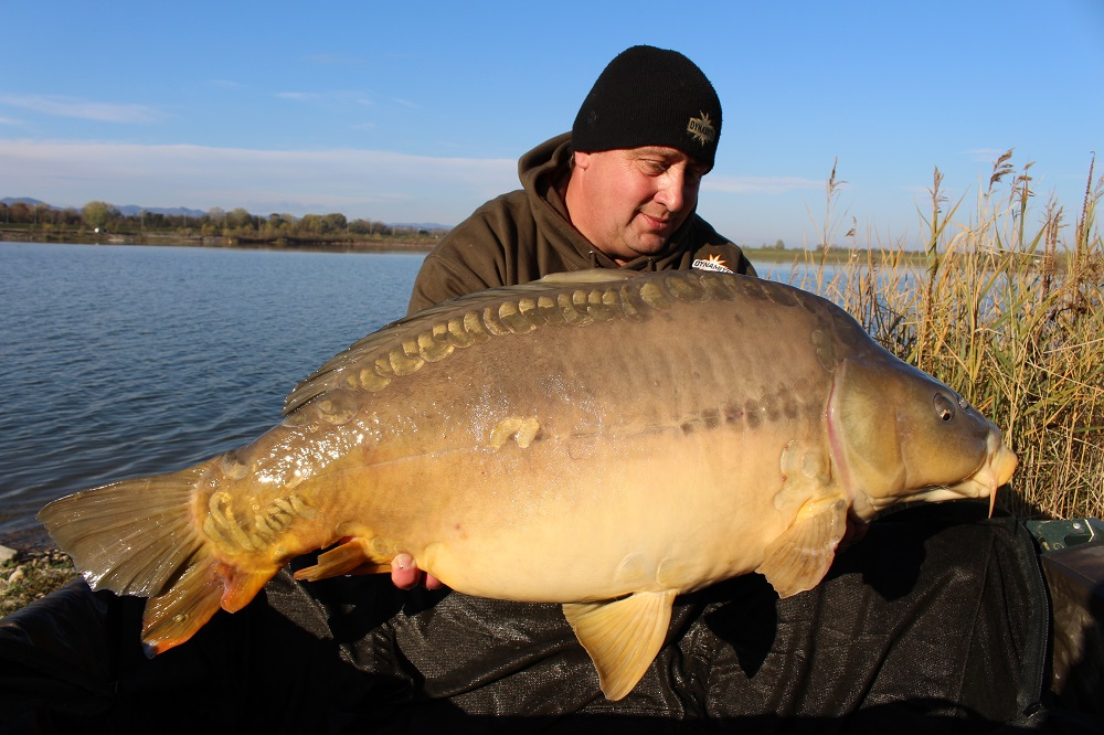 emir caro 40lb plus mirror on the source boilies