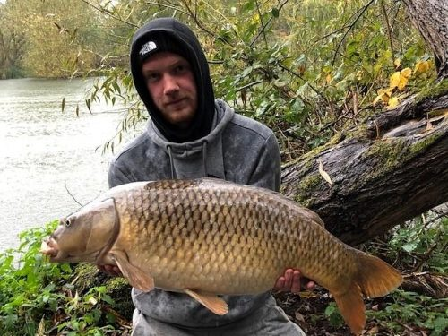 lee bradley complex-t caught carp from the margins