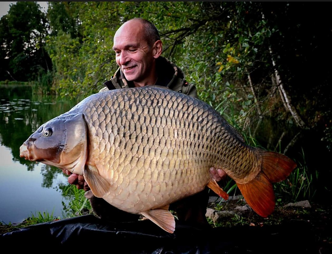 monster tiger nut boilie caught carp from the czech republic vlastimil kolacek