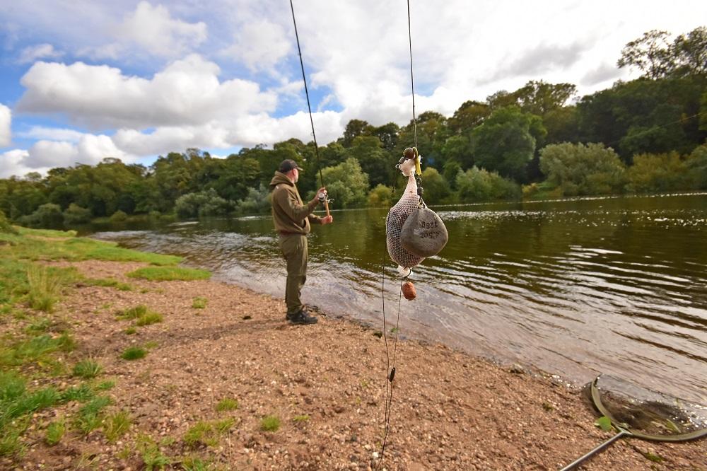 paul elt's top barbel fishing rig