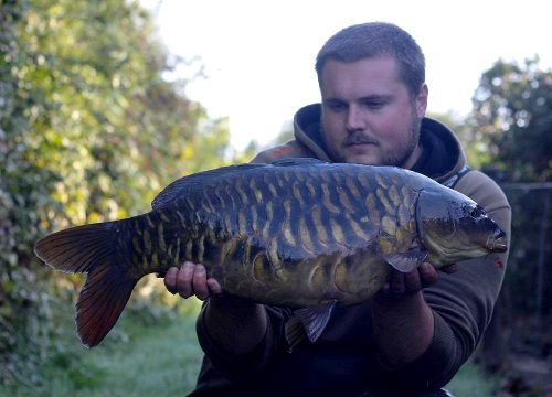 tom pothecary tiger nut frenzied caught carp