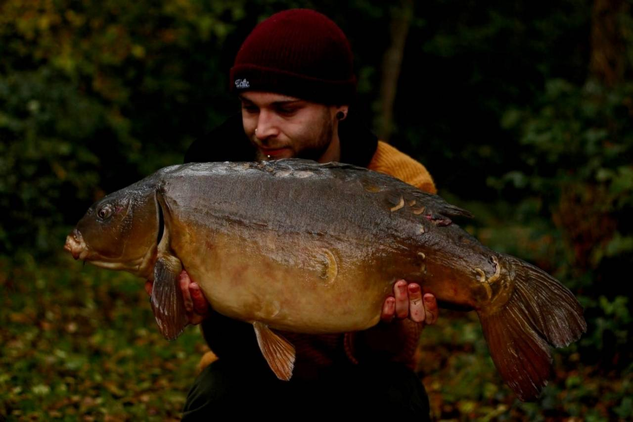 DAVE WILLIAMS YATELEY CARP ON COMPLEX-T