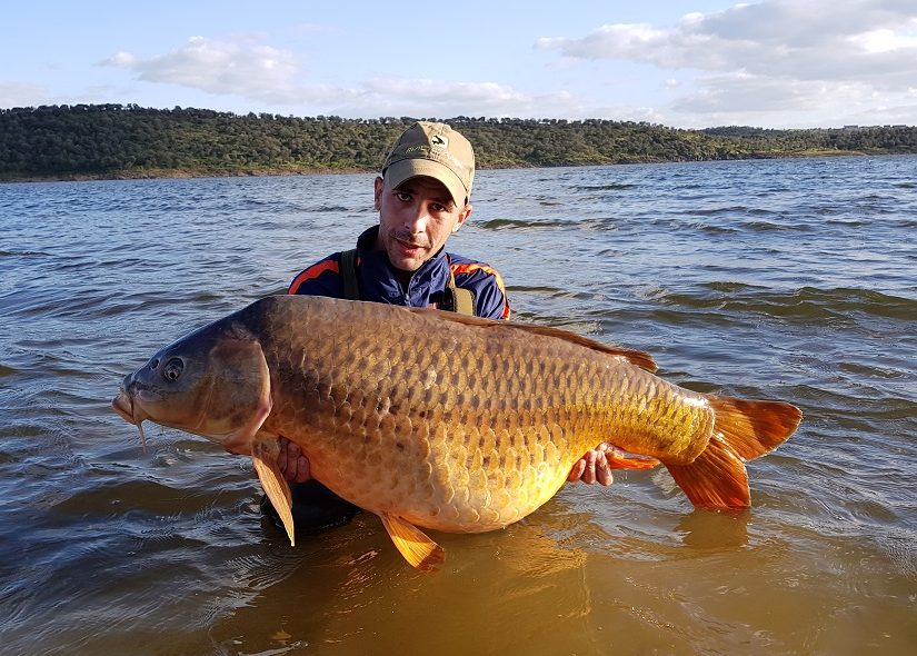 brian gonzalez spanish reservoir common carp