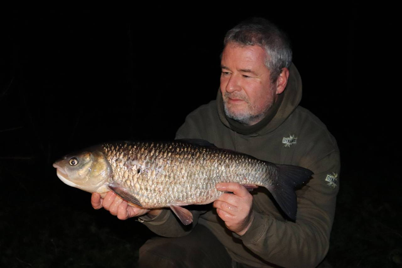7lb great ouse chub caught on complex-t by tony gibson