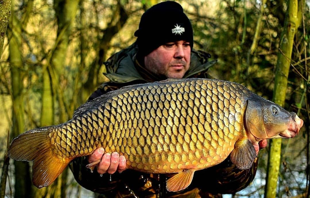 club water carp fishing tips