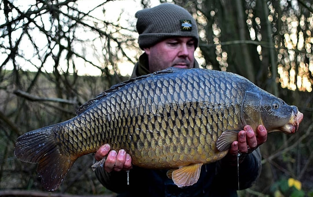 russell crisci club water carp