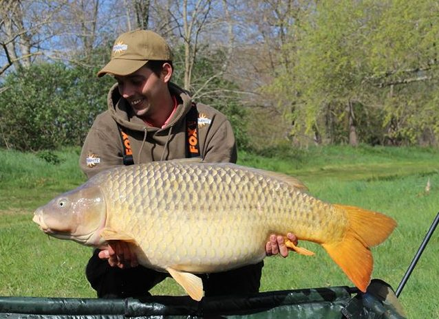 david almundi lac de la latournerie common carp on hit n run pop-ups