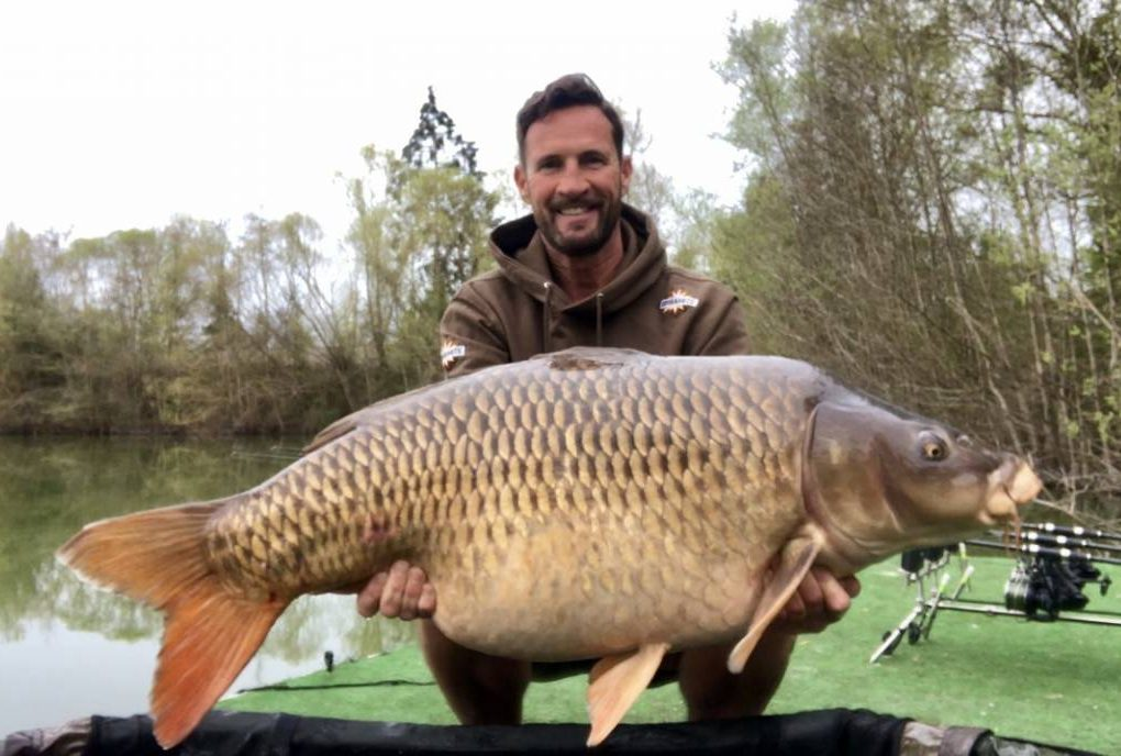 mick bowman cedars lake france 60lb common carp